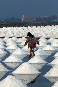 The salt pans
