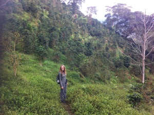 Me standing in the coffee plantation