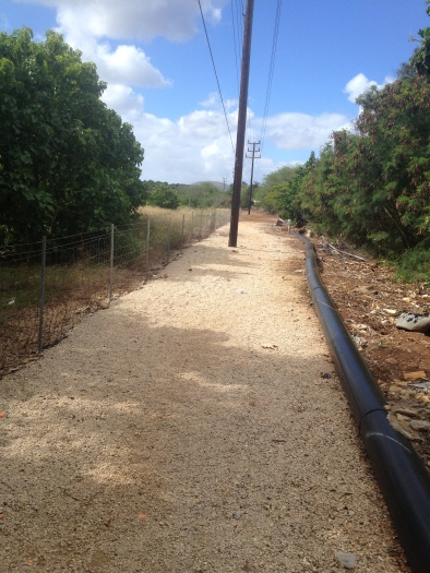 Walk along the dirt road, the impoundment will be on the left