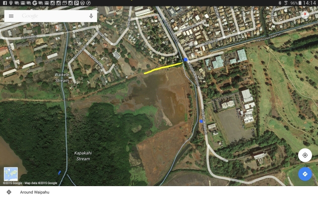 Pouhala Marsh Overview: Blue (parking), Yellow (walking)