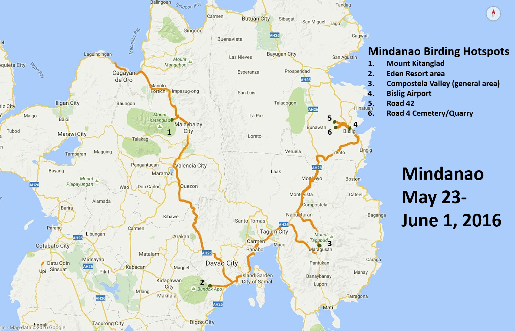 mindanao birding an island of megas budget birders