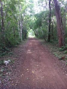 road in Xocen