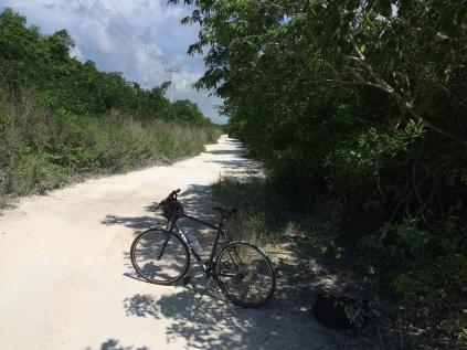 my Cozumel transportation