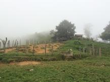 The abandoned farm house