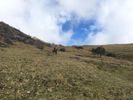 Heading up the final ridge!