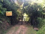 Entrance to Jurassic Park...or El Paujil