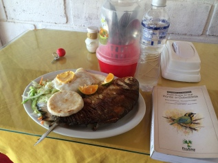 Lunch in Puerto Pinzon