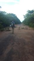 Walking the abandon flight line