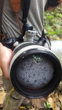 Try taking pictures with a lens like this!
