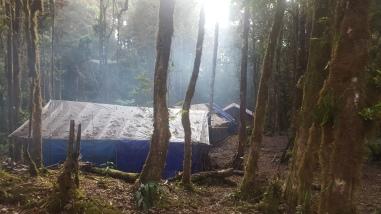 German Camp, photo by Claudia Cavazos